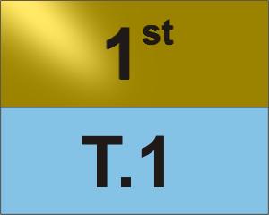 T.1 1v1 Tournament 1st Place