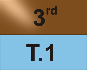 T.1 1v1 Tournament 3rd Place